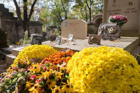 chrysanthemes sur les tombes à la Toussaint